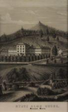 Lithograph that depicts a woman with 2 children pointing towards the State Alms House which sits on a hill.