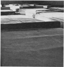 A group of closely arranged beds.