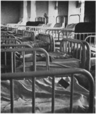 A large group of institutional beds.