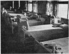 A row of beds with stuffed animals and dolls.