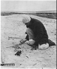 A collecting stones next to a rake on a beach.