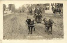A man in a wagon is pulled by two dogs along a dirt street.