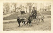 Two dogs pull a man on a wagon. A cannon is in the background.