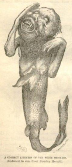 An engraving of a withered monkey torso attached to a fish tail.