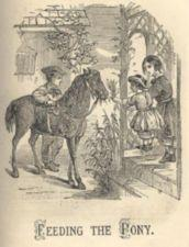 A child feeds some leaves to a pony from a porch.