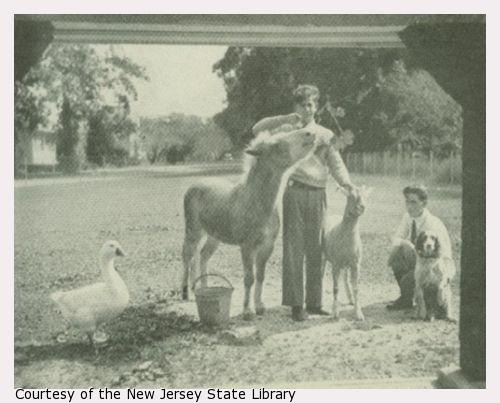 Two young men with a goose, pony, goat, and dog.