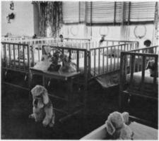 A row of hospital beds with stuffed animals and dolls.