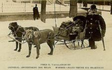 Photograph of Vaillancourt (who has one leg) standing in the snow, with cructhes, in front of a sleigh being drawn by two large muzzled dogs .